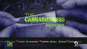 Cannabusiness Report