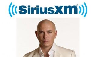 Pitbull-Sirius