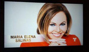 Maria Elena Salinas, Telemundo